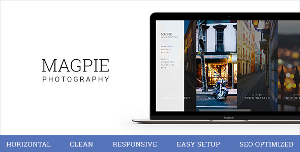 Preview of a photography focused WordPress theme
