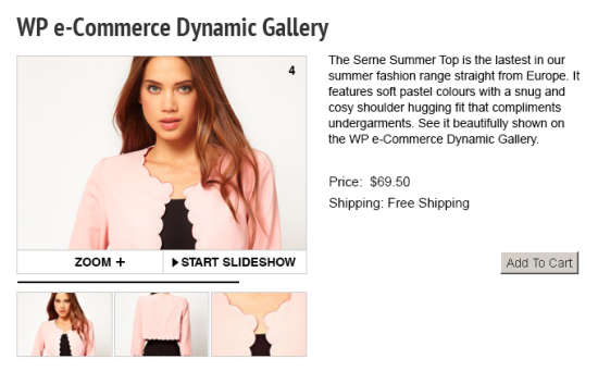 WP Dynamic Gallery that is E-Commerce Plugin