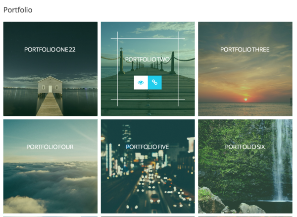 Advance Portfolio Grid